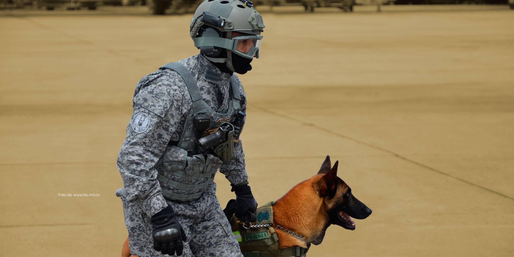 Soluciones de defensa y comunicaciones para Fuerza Armada